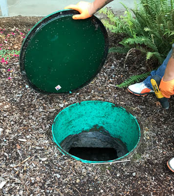Septic system repair and service in Snohomish County